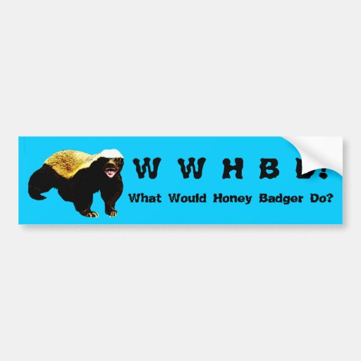 What Would Honey Badger Do (WWHBD?) Blue Bumper Stickers