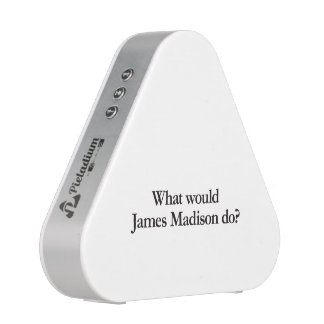 what would james madison do speaker