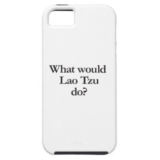 what would lao tzu do iPhone 5 cases