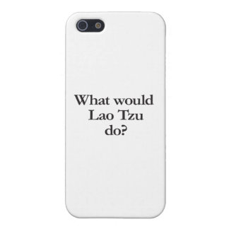 what would lao tzu do cases for iPhone 5