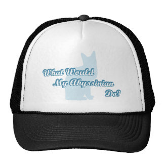 What would my abyssinian do? trucker hat