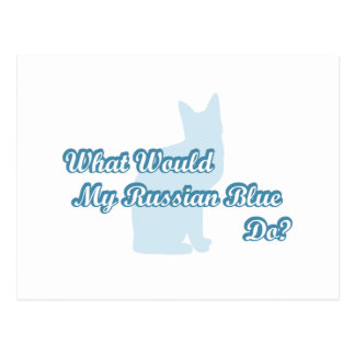 What would my Russian Blue do? Postcard