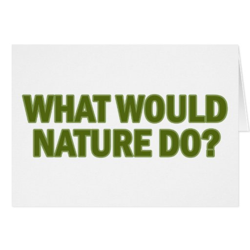 What Would Nature Do? Card