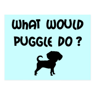 What Would Puggle Do? Postcard