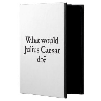 what would william the conqueror do iPad air case