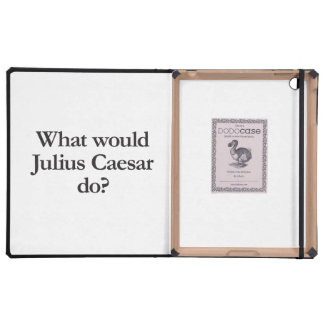 what would william the conqueror do iPad case