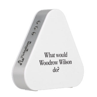 what would woodrow wilson do speaker
