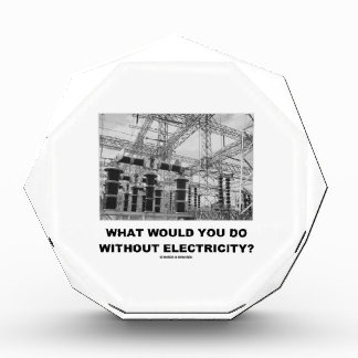 What Would You Do Without Electricity? (Physics) Award