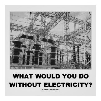 What Would You Do Without Electricity? (Physics) Poster