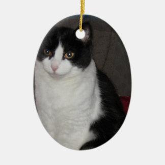 What yarn? Asks Mittzz C the Cat Ceramic Ornament