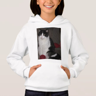 What yarn? Asks Mittzz C the Cat Hoodie