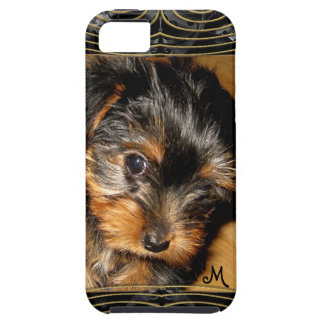What you hiding Yorkie iPhone SE/5/5s Case
