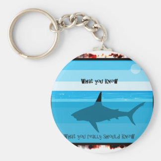 what you know what you really should know. basic round button keychain