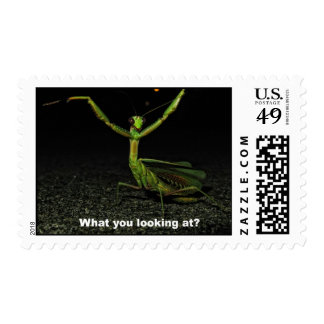 What you looking at Mantis Postage Stamps