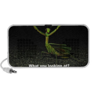 What you looking at Mantis Mini Speakers