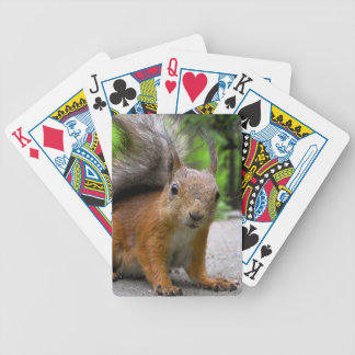 Whatcha Got? Bicycle Playing Cards