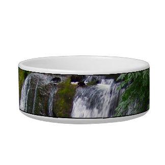Whatcom Falls Bowl