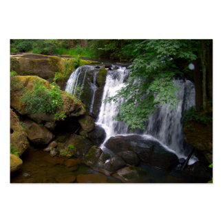 Whatcom Falls Large Business Cards (Pack Of 100)
