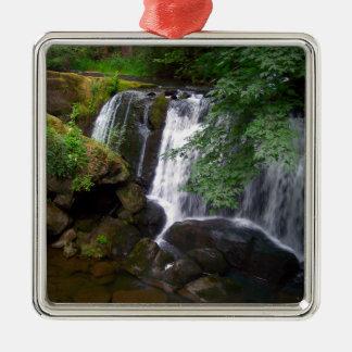 Whatcom Falls Metal Ornament