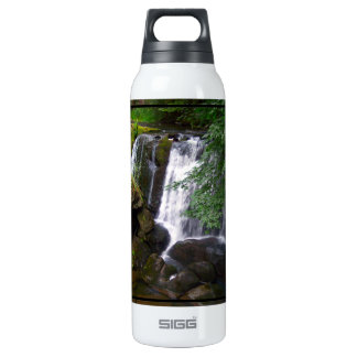 Whatcom Falls Thermos Water Bottle