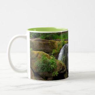 Whatcom Falls Two-Tone Coffee Mug