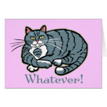 Whatever Cat Greeting Cards
