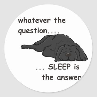 whatever the question... classic round sticker