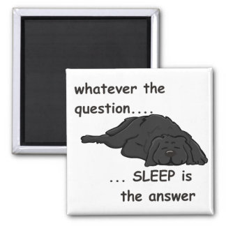 whatever the question... refrigerator magnet