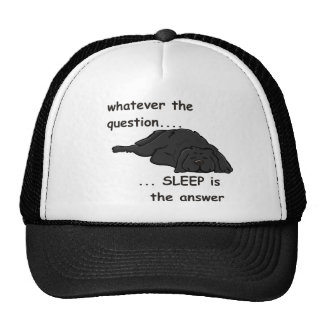whatever the question... trucker hat