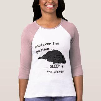 whatever the question... tshirt