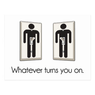 Whatever Turns You On Gay Male Light Switch Postcard