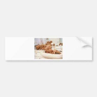 What's A Bath? Cute Puppies Discover BathTime Bumper Sticker