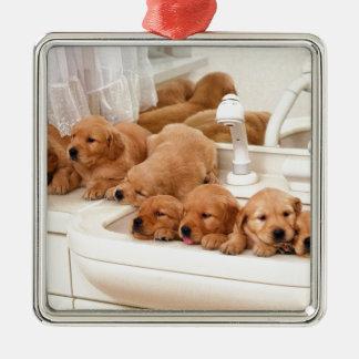 What's A Bath? Cute Puppies Discover BathTime Metal Ornament
