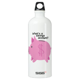 What's A Savings Account? SIGG Traveler 1.0L Water Bottle