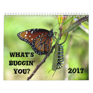 What's Buggin' You - Insect Calendar