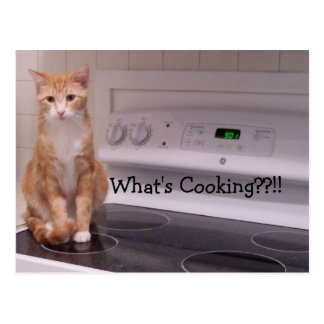 What's Cooking??!! Postcard