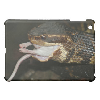Whats for Dinner iPad Mini Case