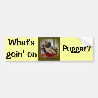 What's Goin on Pugger? Bumper Sticker