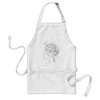 What's in Your Brain Apron