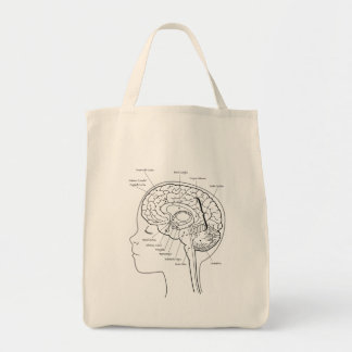 What's in Your Brain Tote Bag