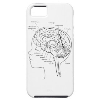 What's in Your Brain iPhone 5 Case