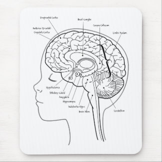 What's in Your Brain Mousepads