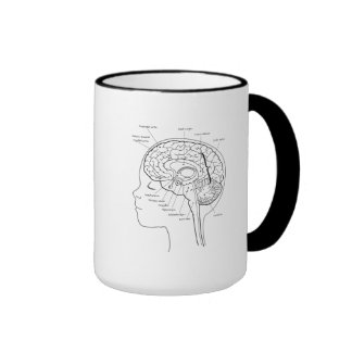 What's in Your Brain Coffee Mug
