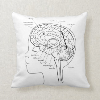 What's in Your Brain Pillow