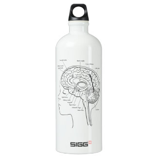 What's in Your Brain SIGG Traveler 1.0L Water Bottle