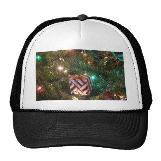 What's Inside? Trucker Hat