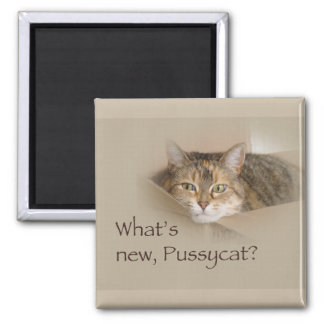 What's New Pussycat? - Lily Magnet