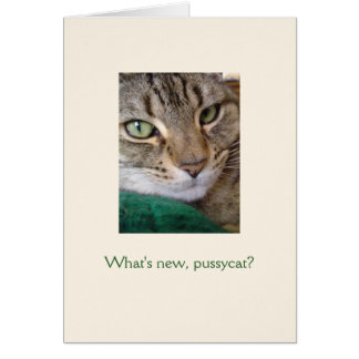 What's new, pussycat? Note Cards