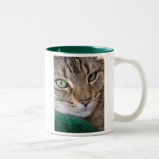 What's new, pussycat? Two-toned Mug
