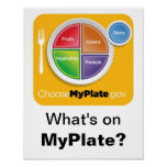What's on MyPlate? Poster - Orange on White